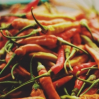 Pungent Taste - Chili